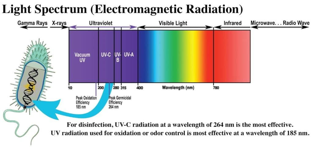 ultraviolet light spectrum